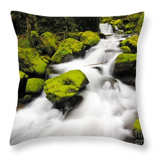 Scenic Throw Pillow featuring the photograph Mccord Creek, Columbia Gorge by John Shaw