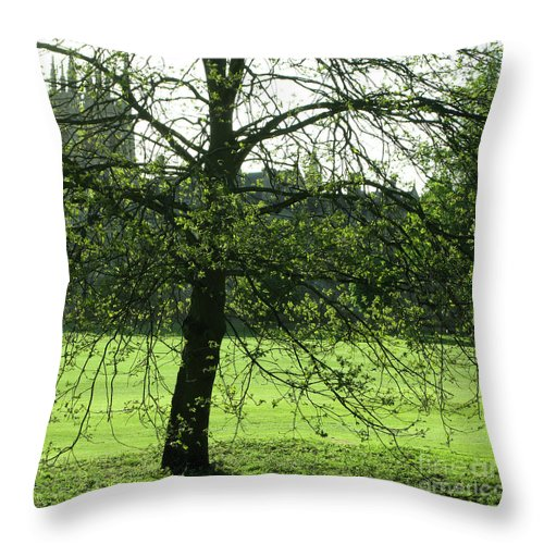 Oxford University Throw Pillow featuring the photograph Meadow View by Ann Horn