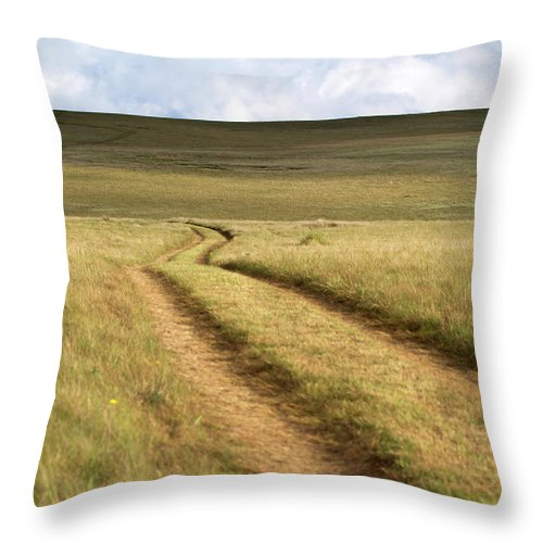 Scenics Throw Pillow featuring the photograph Meandering Path Through The Hills Of by Morgan Trimble