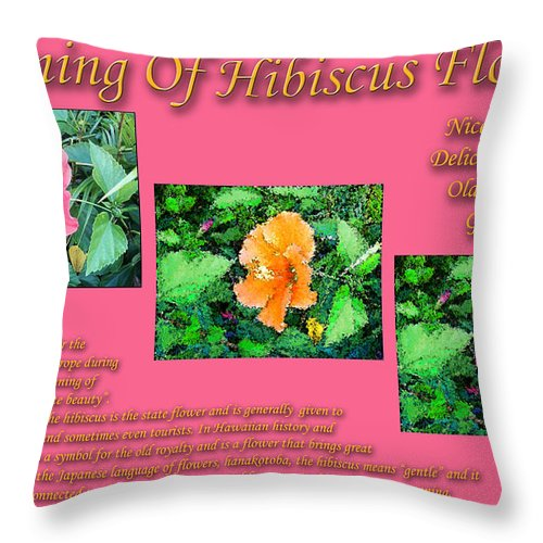 Meaning Of Hibiscus Flowers Throw Pillow featuring the photograph Meaning Of Hibiscus Flowers by William Braddock