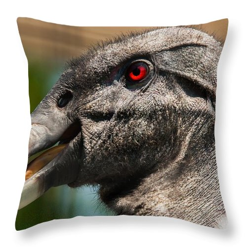 Vulture Throw Pillow featuring the photograph Meet Me In My Office Please by Robert L Jackson