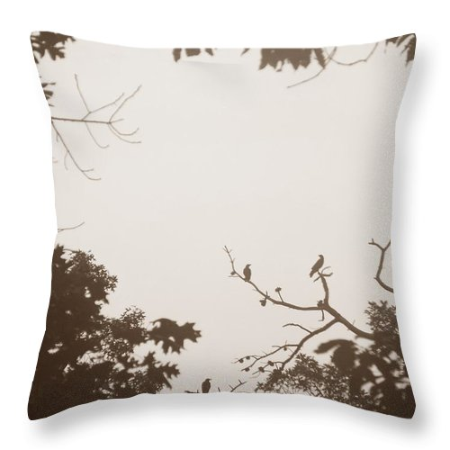 Crows Throw Pillow featuring the photograph Meeting 2 by Maria Manna