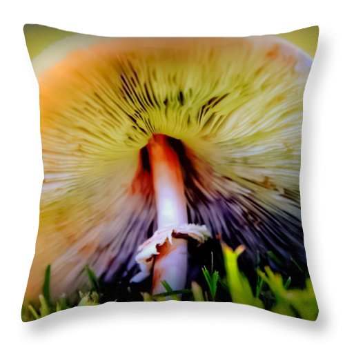 Mushrooms Throw Pillow featuring the photograph Mellow Yellow Mushroom by Karen Wiles