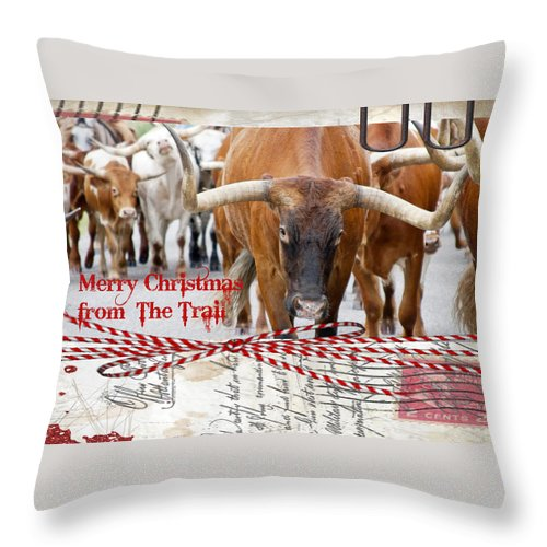 Christmas Throw Pillow featuring the photograph Merry Christmas From The Trail by Toni Hopper