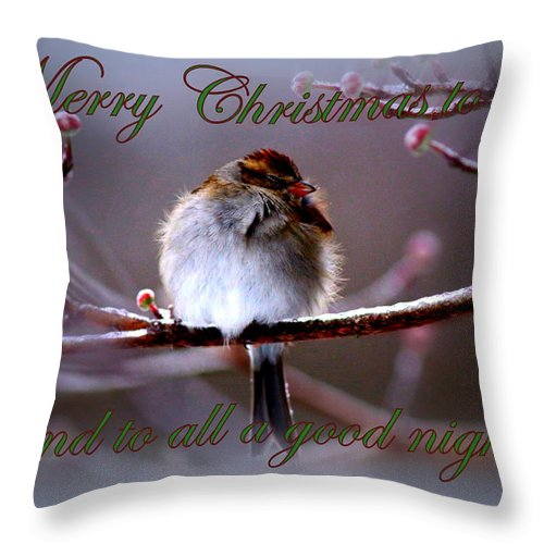 Christmas Throw Pillow featuring the photograph Merry Christmas To All by Travis Truelove