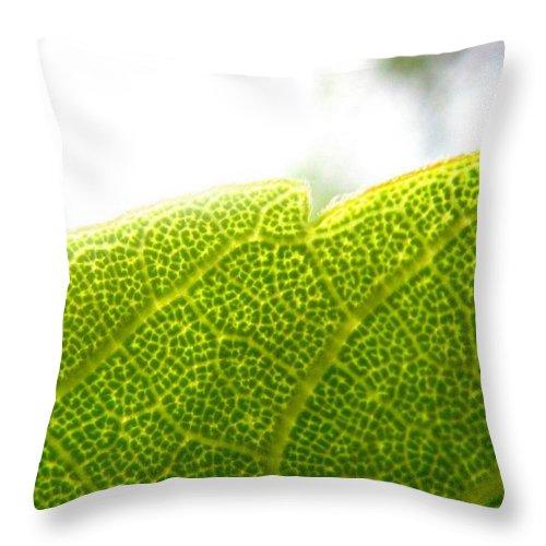 Leaf Throw Pillow featuring the photograph Micro Leaf by Rhonda Barrett