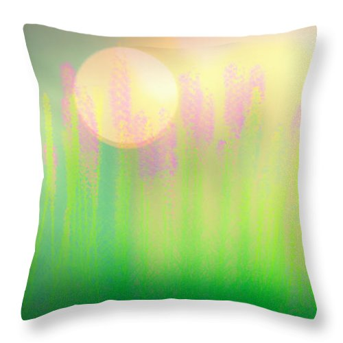 Flower Throw Pillow featuring the photograph Mid Summer Morning by Bob Orsillo