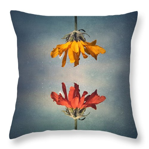 Middle Ground Throw Pillow featuring the photograph Middle Ground by Tara Turner