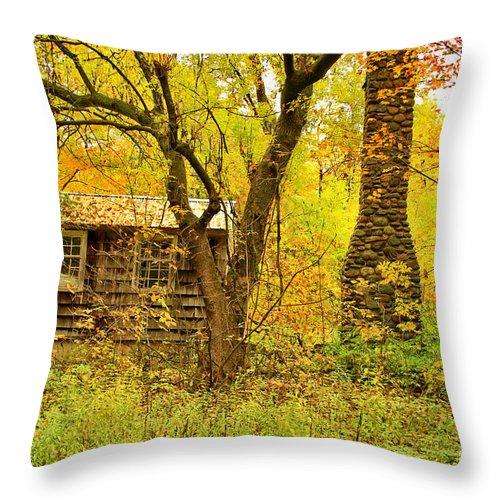 Rural Throw Pillow featuring the photograph Middle Road Gem by Deborah Benoit