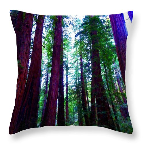 Muir Woods National Monument Throw Pillow featuring the photograph Mighty by Cathleen Cario-Reece
