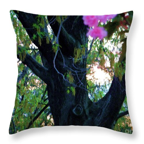 Tree Throw Pillow featuring the photograph Mighty Oak - Spring - Ogden by Susan Carella