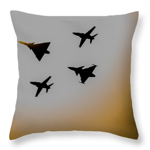 Cheetah D Throw Pillow featuring the photograph Mighty Sun Strike by Paul Job