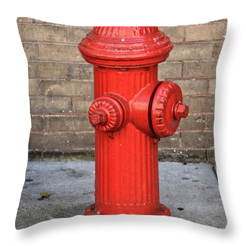 Street Throw Pillow featuring the photograph Milk Wash by The Artist Project