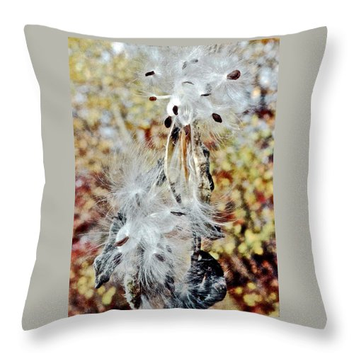 Milkweed Pod On Hart-montague Trail In Northern Michigan Throw Pillow featuring the photograph Milkweed Pod On Hart-montague Trail In Northern Michigan by Ruth Hager