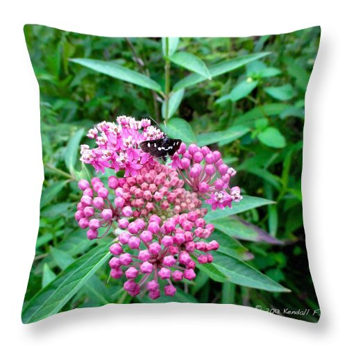 Butterfly Throw Pillow featuring the photograph Milkweed Visitor by Kendall Kessler