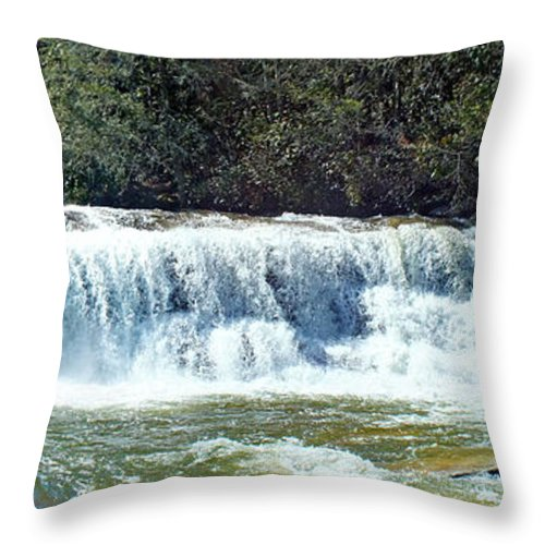 Duane Mccullough Throw Pillow featuring the photograph Mill Shoals Waterfall During Flood Stage by Duane McCullough