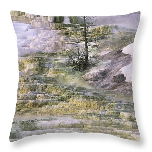 North America Throw Pillow featuring the photograph Minerva Springs Terraces Yellowstone National Park by Dave Welling