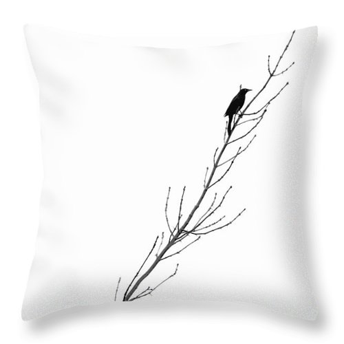 Bird Throw Pillow featuring the photograph Minimalism by Andrea Kollo