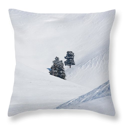 Yellowstone National Park Throw Pillow featuring the photograph Minus 40 by Max Waugh