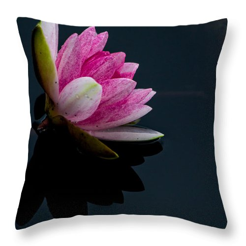 Plant Throw Pillow featuring the photograph Mirror... Mirror On The Water by Eti Reid