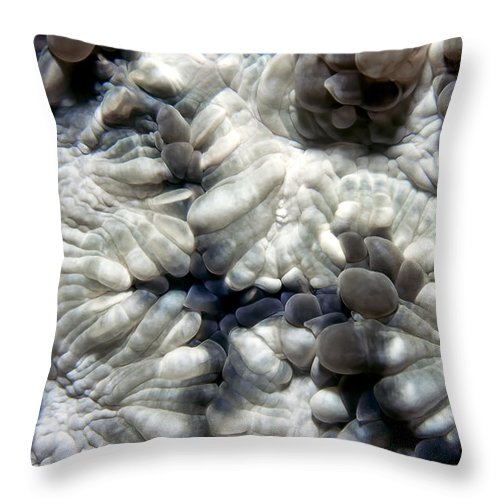 Micronesia Throw Pillow featuring the photograph Miscellaneous 2 by Dawn Eshelman