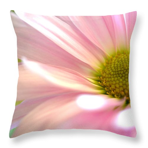 Pink Daisy Throw Pillow featuring the photograph Miss Daisy by Deb Halloran