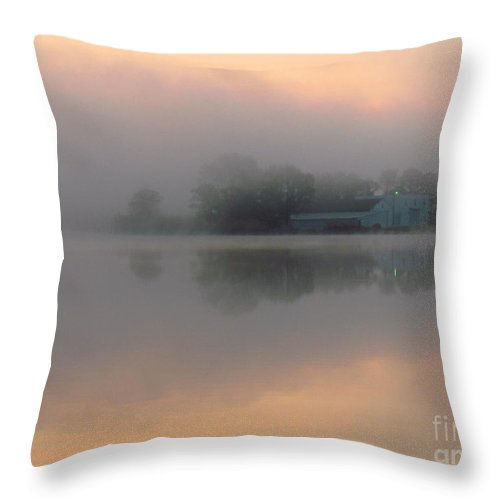 Nature Throw Pillow featuring the photograph Mist At Dawn 02 by Rrrose Pix