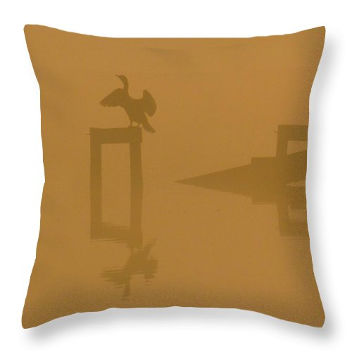 Nature Throw Pillow featuring the photograph Mist At Dawn 04 by Rrrose Pix