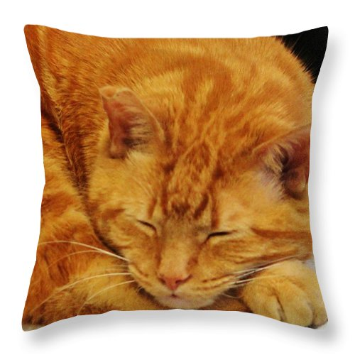 Morris Throw Pillow featuring the photograph Mister Morris by Cynthia Guinn