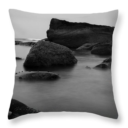 Andrew Pacheco Throw Pillow featuring the photograph Misty Morning by Andrew Pacheco