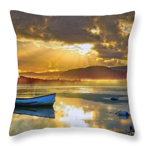 River Throw Pillow featuring the photograph Misty River by Mal Bray