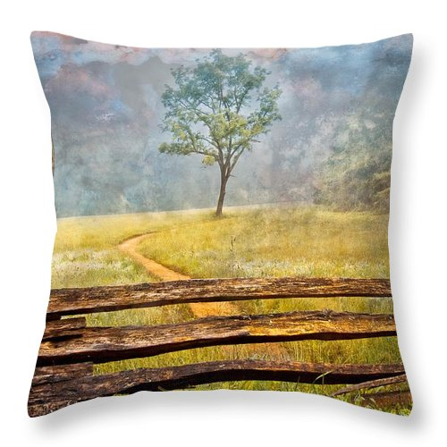 Appalachia Throw Pillow featuring the photograph Misty Tree by Debra and Dave Vanderlaan