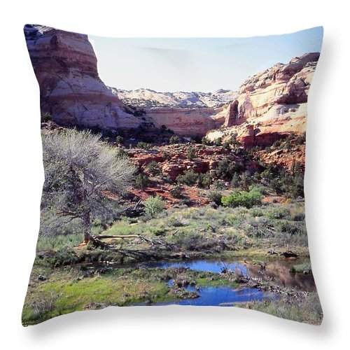 Southern Utah Throw Pillow featuring the photograph Mixed Media by Cynthia Wallentine