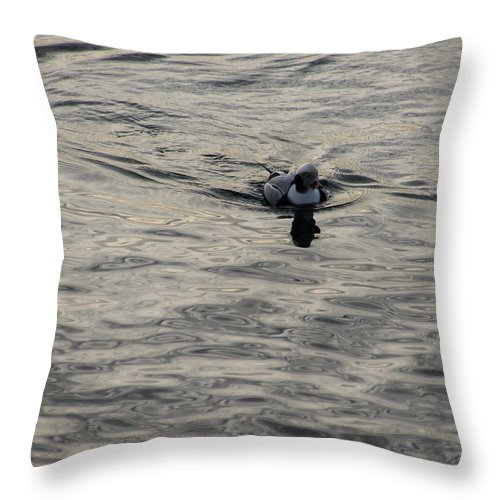 Georgia Mizuleva Throw Pillow featuring the photograph Moire Silk Water And A Long Tailed Duck by Georgia Mizuleva