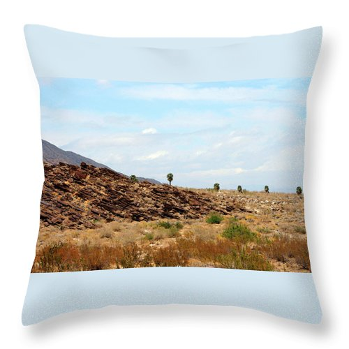 Indian Canyon Throw Pillow featuring the photograph Mojave Desert Landscape by Ben and Raisa Gertsberg