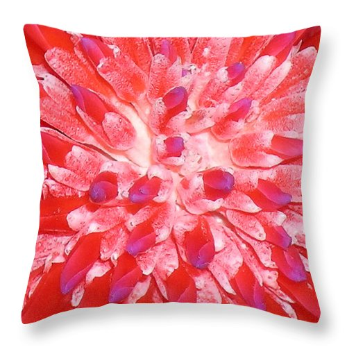 Hawaii Iphone Cases Throw Pillow featuring the photograph Molokai Bromeliad by James Temple