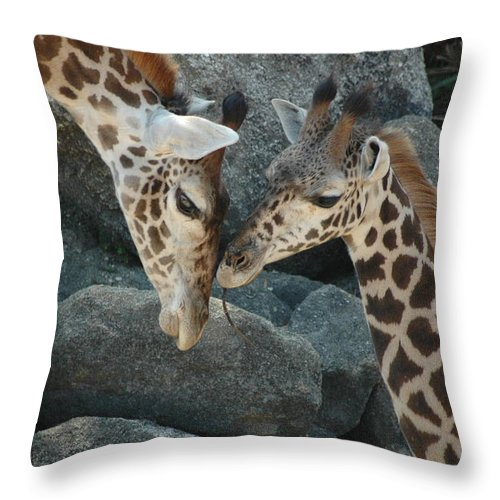 Giraffes Throw Pillow featuring the photograph Mom And Baby Giraffe by Sheri Heckenlaible