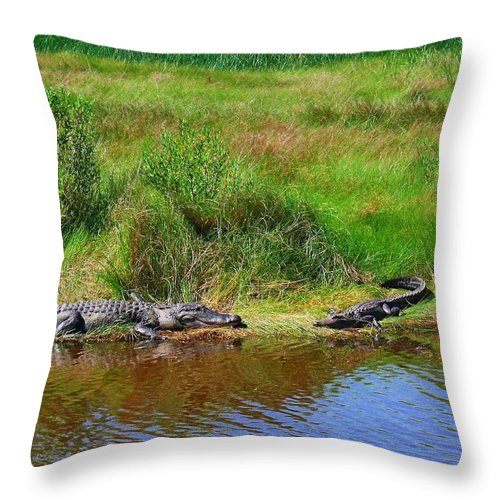 Alligator Throw Pillow featuring the photograph Moma And Juvenile by Robert Brown