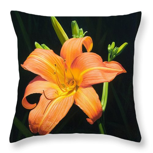 Floral Throw Pillow featuring the painting Monikas Orange Lily by Gary Hernandez
