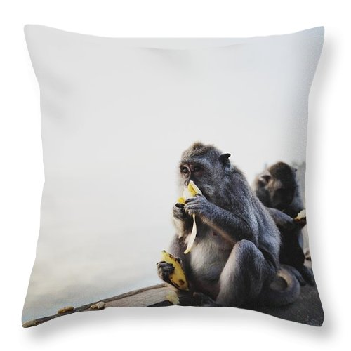 In A Row Throw Pillow featuring the photograph Monkeys Eating Bananas by Carlina Teteris