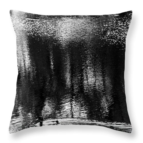 Vilnius Parks Throw Pillow featuring the photograph Monoduck Way by Yevgeni Kacnelson