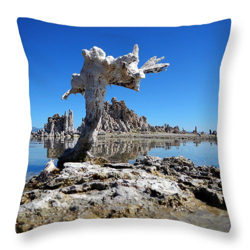 Mono County Throw Pillow featuring the photograph Mono Lake 5709 by Ron Brown Photography