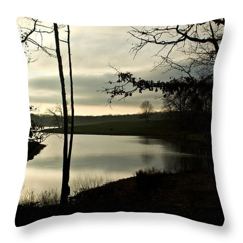 Monterey Throw Pillow featuring the photograph Monterey Silver Lake by Douglas Barnett