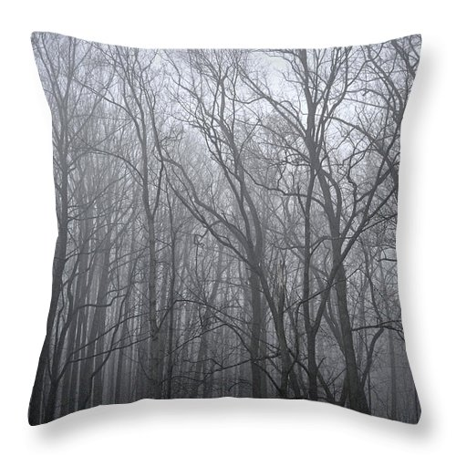 Monochrome Throw Pillow featuring the photograph Moody Outlook by Mary Zeman