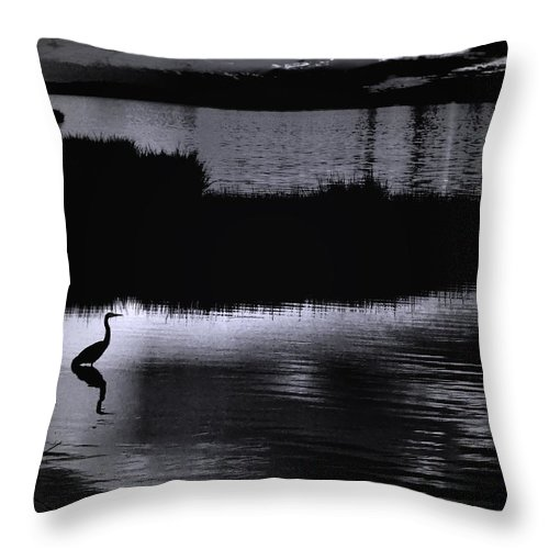 Black And White Throw Pillow featuring the photograph Moon N Ma Bird 2 by Robert McCubbin