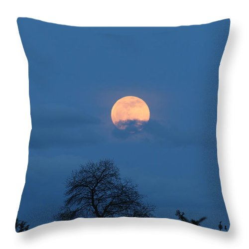 Moon Rising Throw Pillow featuring the photograph Moon Rising by E Faithe Lester