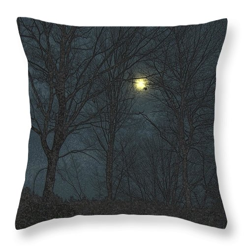 Moon Throw Pillow featuring the photograph Moon Tree by Mim White