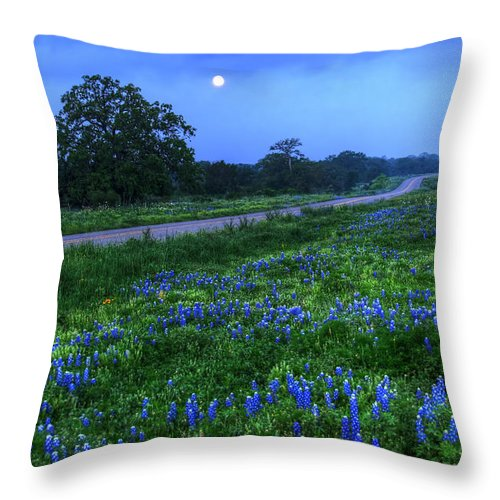 2012 Throw Pillow featuring the photograph Moonlit Bluebonnets by Tom Weisbrook