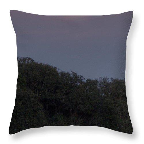 Moon Throw Pillow featuring the photograph Moonrise Too by Dan Wells