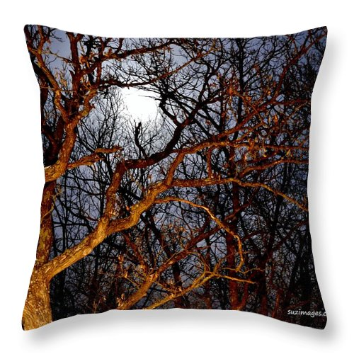 Full Moon Throw Pillow featuring the photograph Moonshine 3 by Susie Loechler